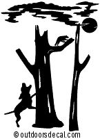 Coon Hunting Decal Split Tree Hunting Truck Sticker Wildlife - Hunting decals for truckshuntingfishing window decals in white or camouflage at woods