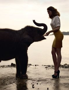 Woman & Elephant by Sean & Seng