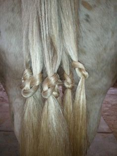 Figure Eight knots to help tails grow - from CEO Performance Horses & Solo Farm