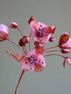 jude miller crepe flowers