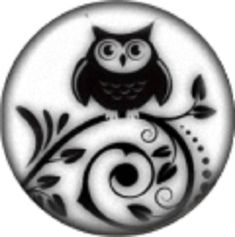 Enamel Black White Wise Owl Bird 20mm Snap Charm For Ginger Snaps Jewelry
