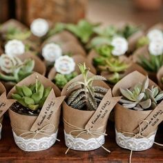 My green friendly wedding theme: room for a roma .- My green friendly wedding theme: room for a romantic … # for - Wedding Signs, Diy Wedding, Rustic Wedding, Wedding Ideas, Succulent Wedding Favors, Wedding Favours, Botanical Decor, Botanical Wedding Theme, Bridal Shower