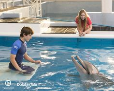 The stars of Dolphin Tale start arriving to Clearwater Marine Aquarium in just one week! Let the fun times begin. #IMetCozi #IMetNathan #IMetAustin