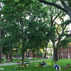 At Harvard University