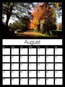 August 2013 Popsicle Calendars http://www.freeprintableonline.com/printables/calendars/monthly-calendars/august-2013-popsicle-calendars