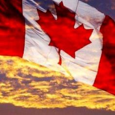 Are we experiencing the end of democracy in Canada? -- If we refuse to embrace ethical values to construct a better society, Canada will continue to see a weakening and fragmented society and ultimately the end of true democracy. Ontario, Voyage Canada, I Am Canadian, Canadian Flags, Canadian Horse, Canadian Cuisine, Canadian Dollar, Sites Touristiques, Beau Site