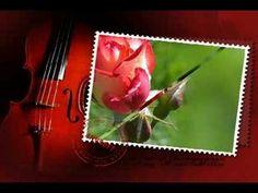 Versos A Uma Rosa Vermelha - de de Anderson Christofoletti