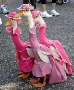 Princess Ducks