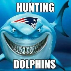Go Pats, New England Patriots, Dolphins, Super Bowl, Hunting, Sports, Hs Sports, Sport, Fighter Jets
