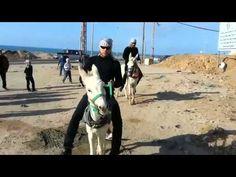 Palestinian Gangnam Style