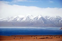 Mansarovar Lake, Tibet. SO beautiful. It is a real scenery, just in case you're thinking it's edited.