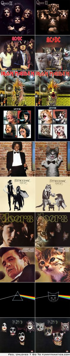 10 classic album covers recreated with kittens | Things for Geeks