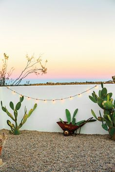 Entertaining Tips from The Block Shop Sisters Green and Pink and Taupe and White Exterior The Block, Desert Backyard, Arizona Backyard Ideas, Pot Plante, Desert Homes, Exterior Lighting, Backyard Landscaping, Land Scape, Exterior Design