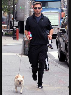 Reason #427 why I should get a French bulldog: Hugh Jackman and I could have doggie play dates.