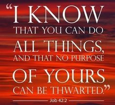 Purpose Quotes Fascinating Plans  Purpose #quotes #verse #bible  Pinapoloza  Pinterest .