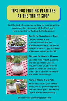 How to find planters at the thrift shop - make herb gardens and succulent bowls to give as gifts. #SmartFunDIY