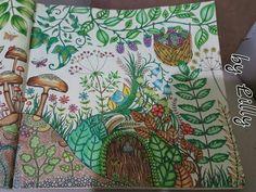 Floresta encantada / Floresta encantada porta / Floresta encantada cogumelos / Jardim secreto / Johanna basford /