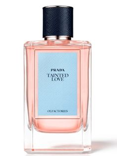 Tainted Love Prada for women and men
