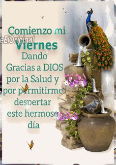 Viernes Gif, Best Vibrators, The Originals, Gifs, Blessed Friday, Good Morning Friday, Presents