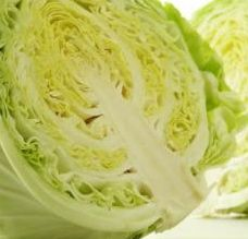 Food Guy :: Cabbage & Bean Sprouts