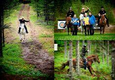 Beridet bågskytte är från och med nu en officiell gren inom Svenska Bågskytteförbundet! Det innebär att sporten nu också är accepterad av Riksidrotts Förbundet. Läs mer om sporten på www.bydha.se