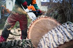 Tree removal is the service that comes to answer the need of dislodging a tree.