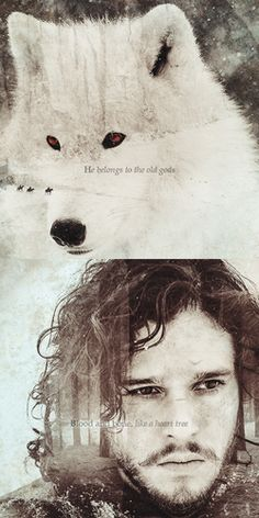 Jon Snow & Ghost - Jeu-de-trônes Fan Art