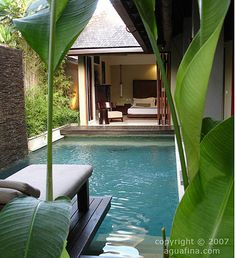 i want my home to be near lots of water & plants (more preferably, inside).. if not naturally existing / growing, then unnatural is second best...