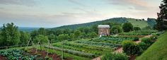 The Jefferson Monticello -  https://www.monticello.org/site/visit/events/spring-vegetable-planting