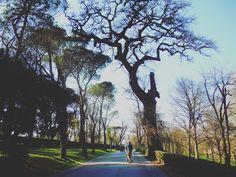 passeggiando per Villa Borghese. #Roma