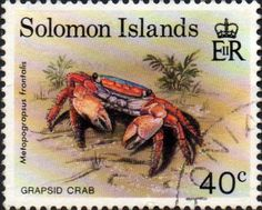 Solomon Island 1993 Crabs SG 756 Fine Used SG 756 Scott 606 Other British Commonwealth Empire and Colonial stamps Here