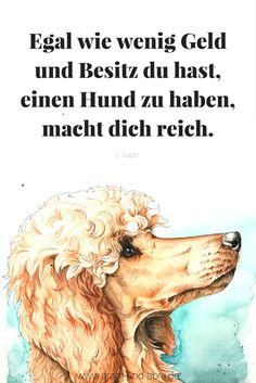 Zitat Hund, Zeichnung Aquarell Pudel, Aram und Abra Auch als Postkarte im DaWanda-Shop