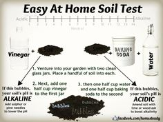 Don't know about you, but my soil knowledge is scant. This season I have a personal goal to learn more about soil, and how to create fertility from the ground up. Someone I know once told me …