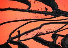 """""""Vietnam. Cultura di riso e bambù"""", fotografie di Massimo Allegro, dal 10 al 27 gennaio 2013 alla Casa delle culture del mondo della Provincia di Milano. Vietnam, Milano, World, Painting, Image, Art, Culture, Art Background, Painting Art"""