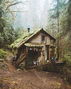 This cold snap's got us dreaming of cosying up in this little cabin in the woods