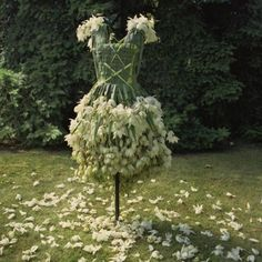 Dress made from yucca leaves and flowers. Dress made from yucca leaves and flowers. Dress made from yucca leaves and flowers. Garden Dress, Fairy Dress, Fairytale Dress, Halloween Karneval, Patio Pergola, Backyard, Floral Fashion, Green Fashion, Botanical Fashion