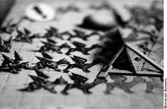 Première remarque sur Escher