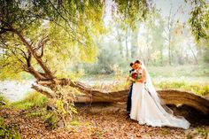 Romantika na svadbe . . .  #slovenskasvadba #svadobnafotografia #fotografnasvadbu #svadobnyfotograf #svadobnefoto #marosmarkovic Studio, Wedding Dresses, Fashion, Bride Dresses, Moda, Bridal Gowns, Fashion Styles, Weeding Dresses, Studios