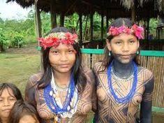 Image result for indias brasileiros