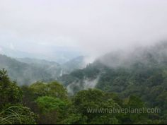 Coorg Photos - Check out Coorg photos, Brahmagiri Wildlife Sanctuary - An Aesthetic View photos, Brahmagiri Wildlife Sanctuary images & pictures. Find more Coorg attractions photos, travel & tourist information here.