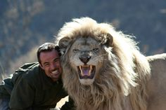 """Kevin Richardson, a. the Lion Whisperer, roars with one of his lions at the Kingdom of the White Lion Park in South Africa. """"This idiot is about to be my noon time snack"""" says the lion. Kevin Richardson, Amor Animal, Mundo Animal, Tim Travel, Planeta Animal, Animals Beautiful, Cute Animals, Wild Animals, Beautiful Lion"""