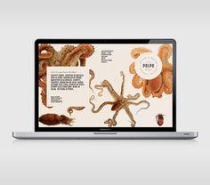 Beautiful sea creature illustrations lift restaurant branding | Branding | Creative Bloq
