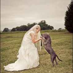 I WILL have a picture like this with our pup for either engagement or wedding pics. So playful and sweet.