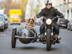 This is my future. I want a side car to drive my  dog around in, he'll wear the same goggles. lol
