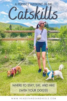 If you live in NYC and are looking for an escape to the mountains with your pups, this is the trip for you! Here's where to stay, eat, and hike with your dogs during a weekend getaway in the Catskills.