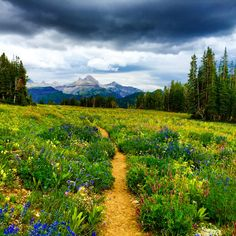 Take Jimmy Chin's Advice and Hike the Teton Crest Trail