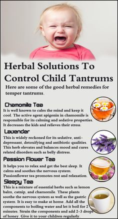 Natural treats such as herbs have shown promise in curing temper tantrums since it is a recurring problem, at least, up to a certain age. Herbs not only help in calming down the children but also help in the development of correct reasoning in them to avoid tantrums in the future. Here are some of the good herbal remedies for temper tantrums