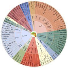 Helpful for identifying elusive aromas. Rum Tasting, Wine Tasting Notes, Wine Tasting Party, Champagne Yeast, Bakers Yeast, Black Licorice, Vitis Vinifera, Wine Delivery, Beer Brewing
