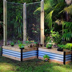 Birdies Garden Products