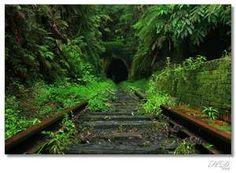 Old Helensburgh Railway, Helensburgh,Australia
